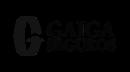 gaiga-seguros-sitespot